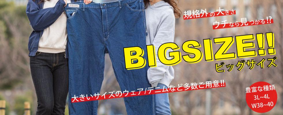 ビッグサイズ特集